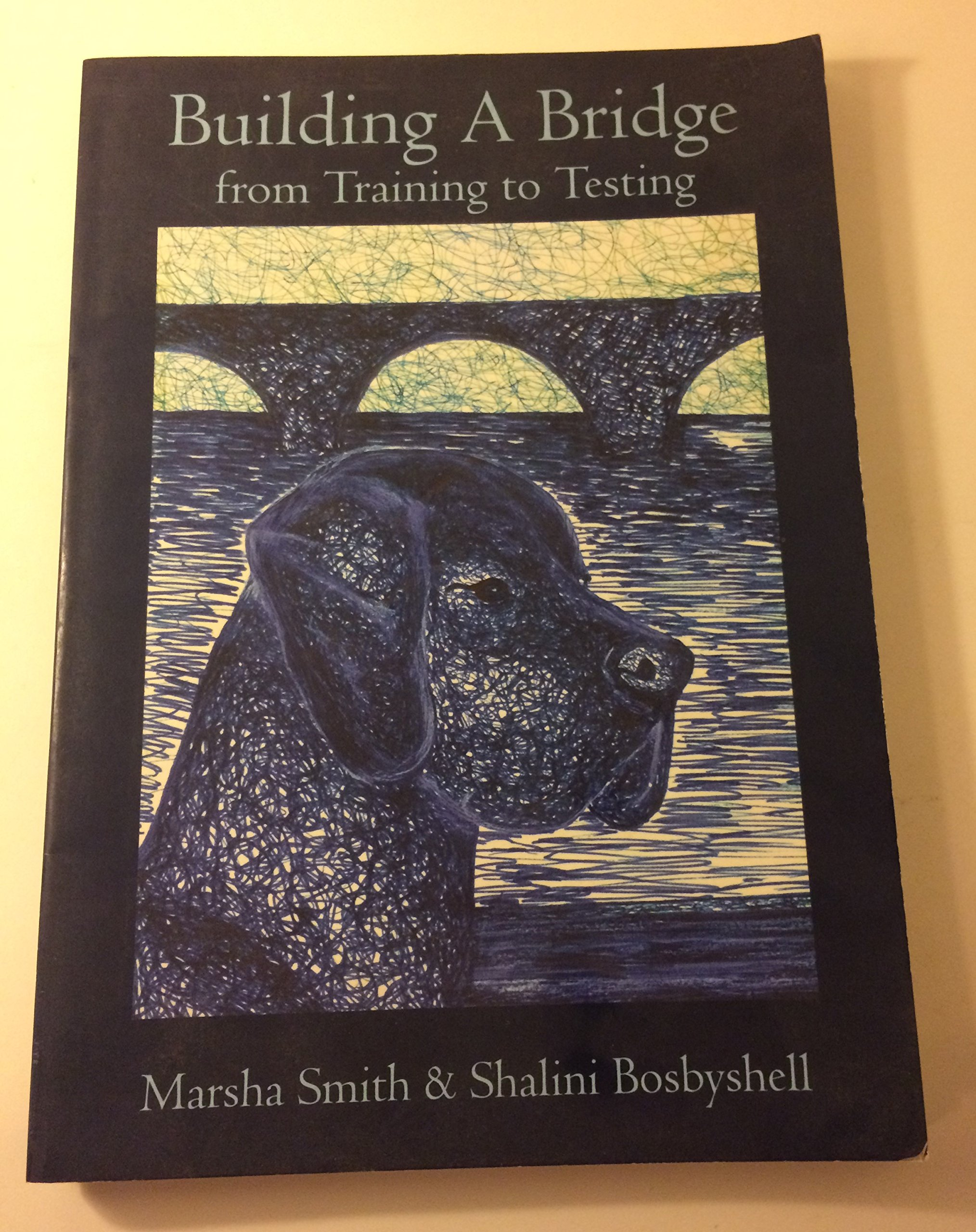 Building a Bridge : From Training to Testing ebook