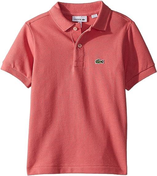 cheap lacoste polo shirt kids