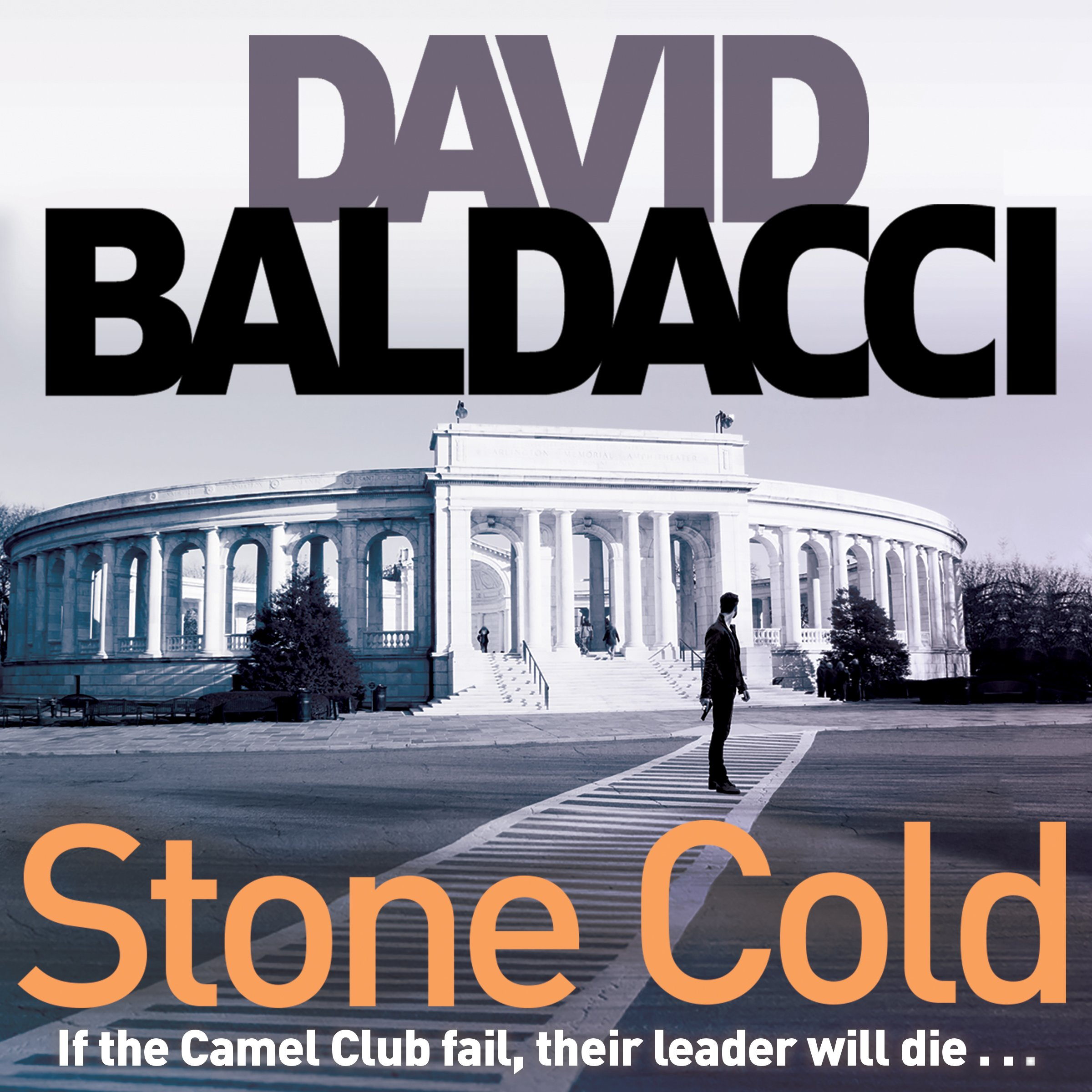 Stone Cold: Camel Club, Book 3