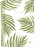 """bloom daily planners 2018 Calendar Year Daily Planner - Passion/Goal Organizer - Monthly and Weekly Datebook and Calendar - January 2018 - December 2018-6"""" x 8.25"""" - Palm Leaves"""