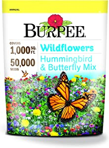 Burpee Wildflower Seed Mix for Hummingbirds and Butterflies