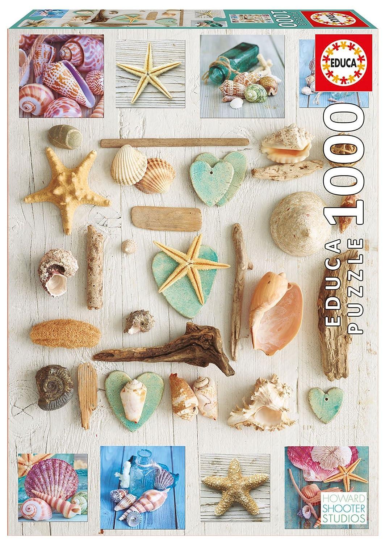 Educa 1000 PC Seashell 1000 Collage Seashell Puzzle B0793JSMVR B0793JSMVR, ミクモチョウ:d71953ba --- ero-shop-kupidon.ru