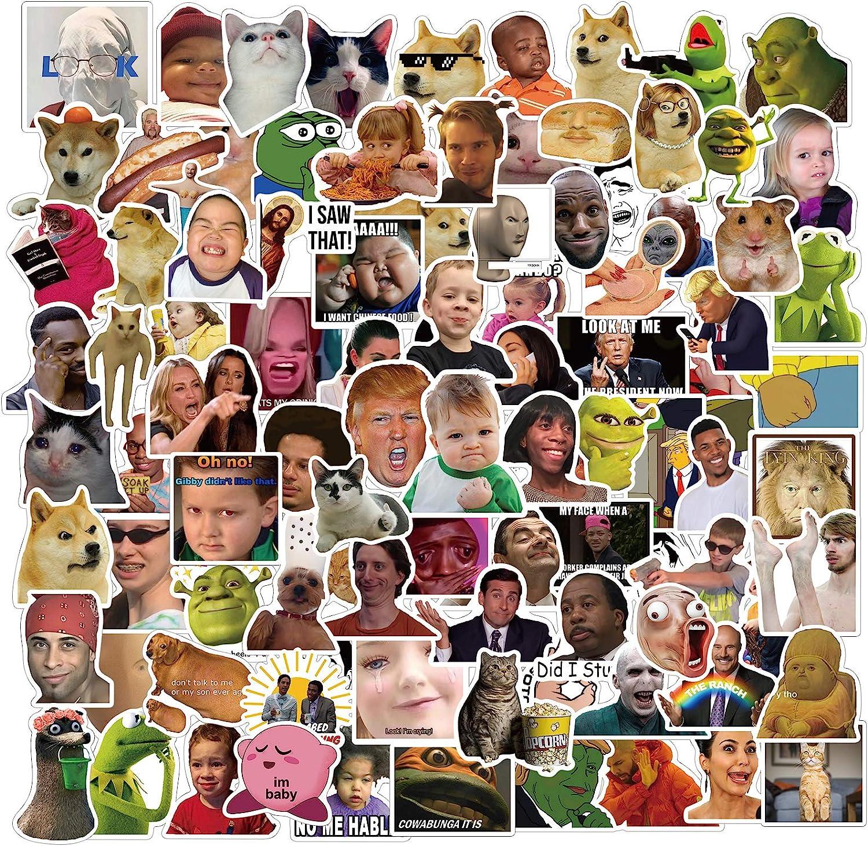 Funny Meme Stickers,100PCS Vinyl Stickers for Laptop,Skateboard,Water Bottles, Hydro Flasks,Computer,Phone,Guitar, Funny Vine Meme Stickers for Adult(Meme Stickers)