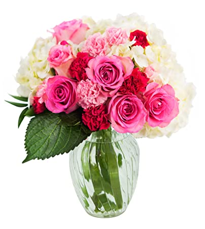 Amazon Let Them Eat Cake Bouquet Of Pink Roses And White