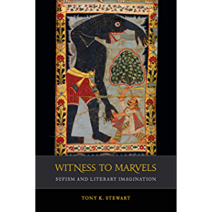 Witness to Marvels: Sufism and Literary Imagination (Islamic Humanities Book 2)