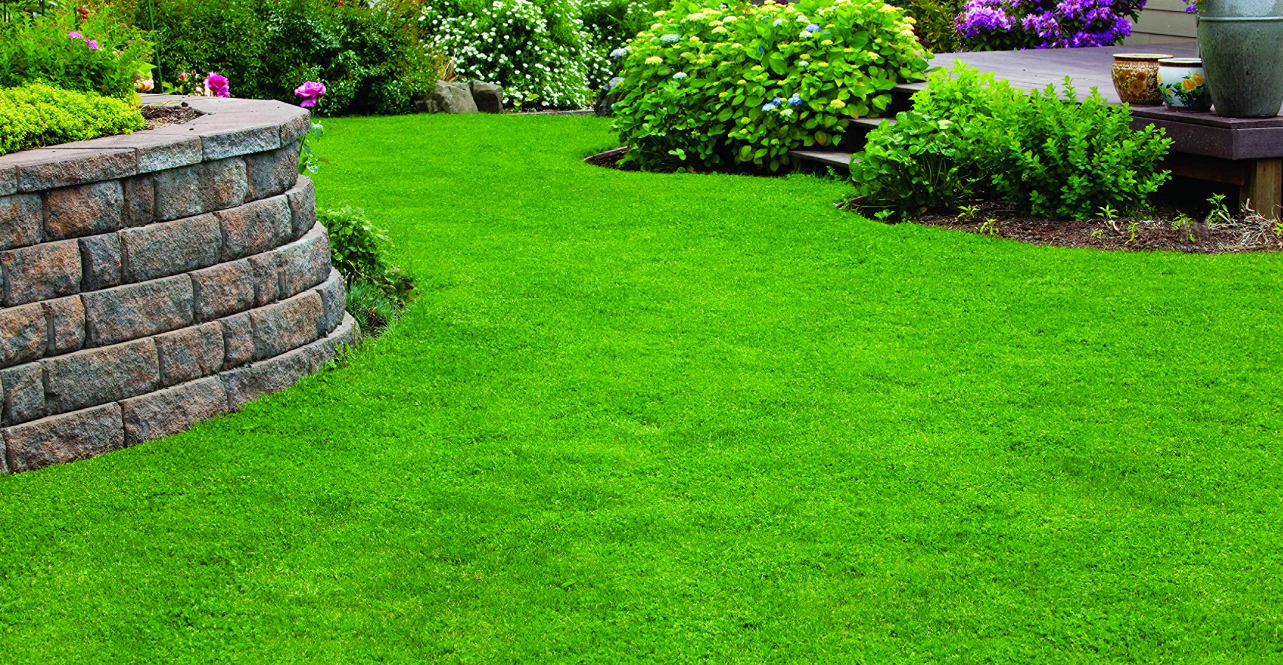 X-Seed 440AS0135UCT-5 MicroLawn Grass & Micro-Clover Mixture, 5, White by X-Seed (Image #6)