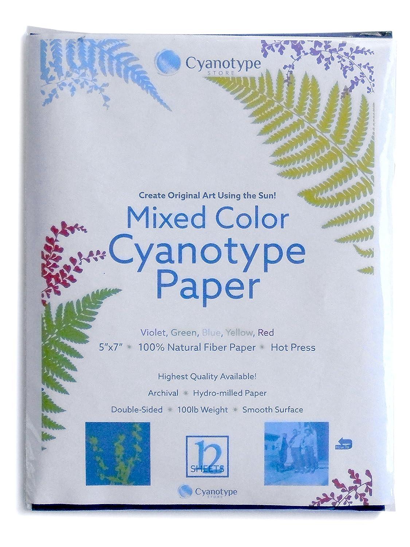Cyanotype 5