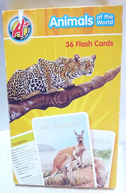 Amazon.com: Animales 36 tarjetas flash: Toys & Games