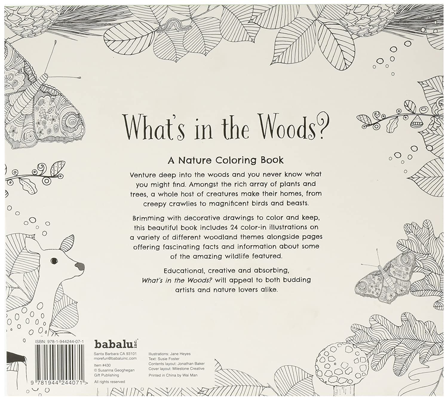 amazoncom whats in the woods coloring book toys games
