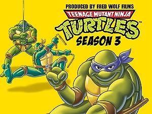 Amazon.com: Teenage Mutant Ninja Turtles Season 3: Michael ...