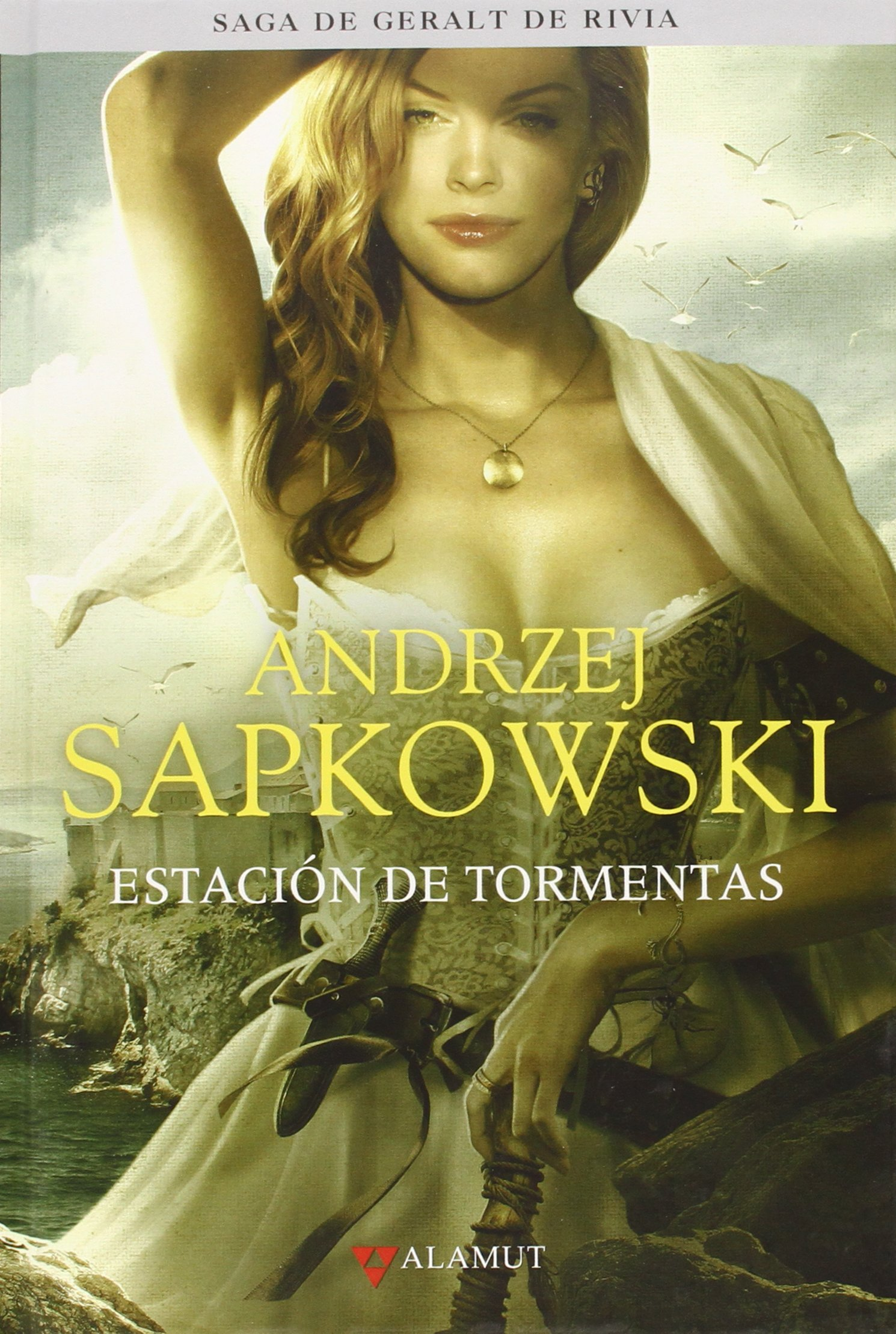 libros the witcher
