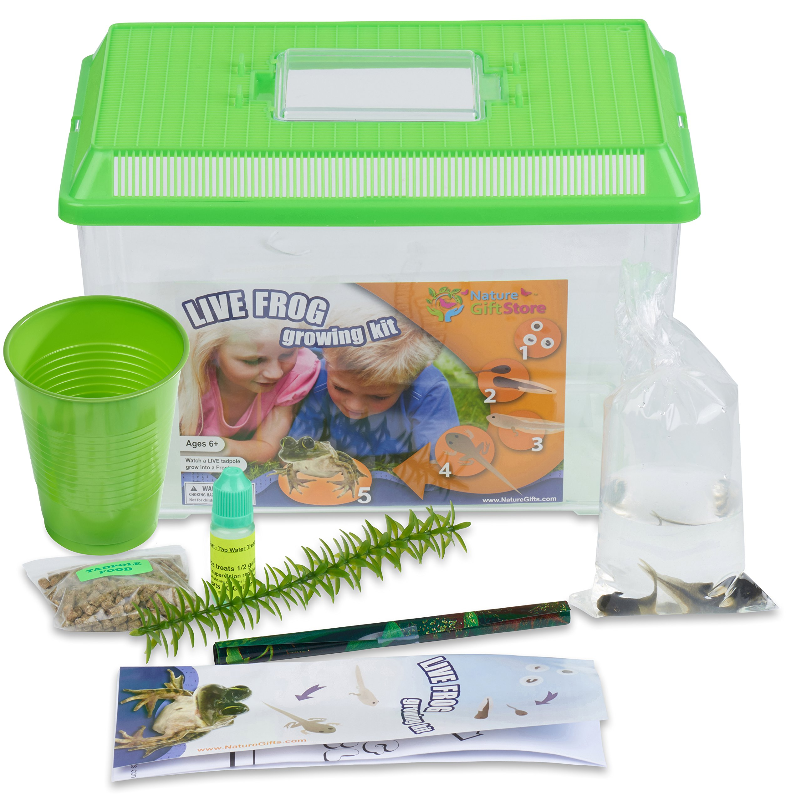 Nature Gift Store Frog Growing Kit: Certificate for 2 Free Tadpoles, Large 2-Gallon Habitat, All Supplies Needed