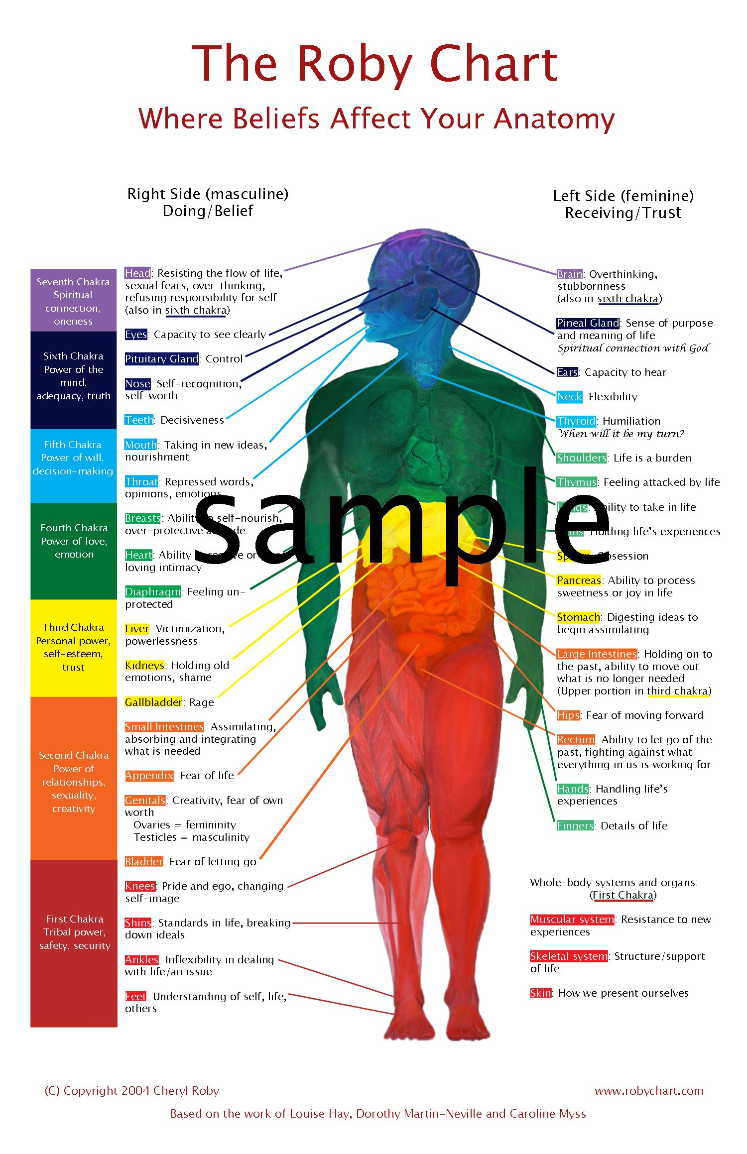 Amazon The Roby Chart Where Beliefs Affect Your Anatomy White