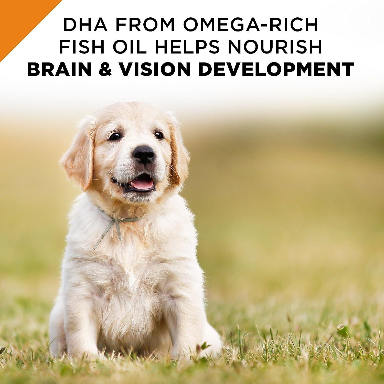 Purina Pro Plan Savor triturado Mezcla Cachorro Pollo & arroz fórmula seco Perro Alimentos: Amazon.es: Productos para mascotas