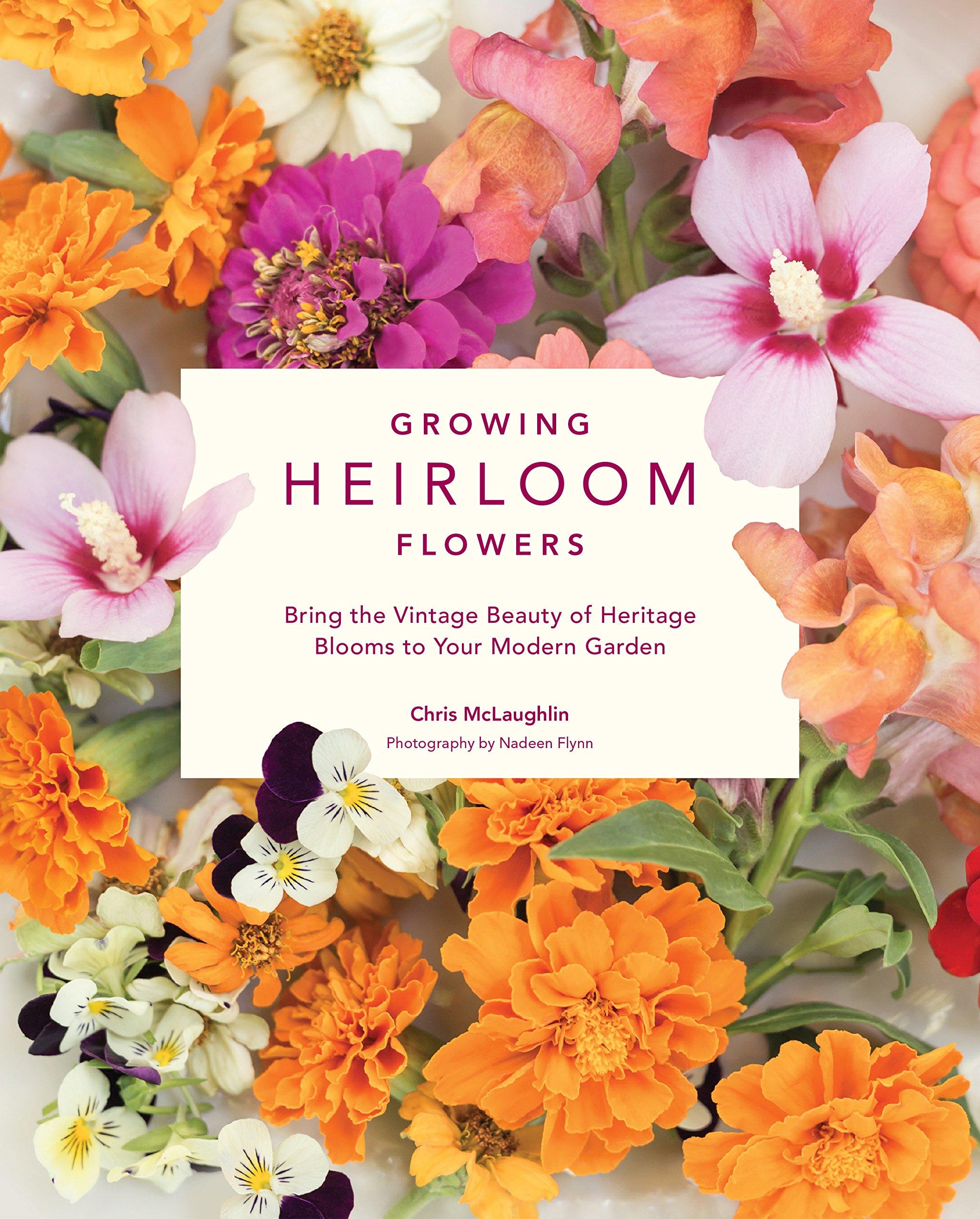 Growing Heirloom Flowers Bring The Vintage Beauty Of Heritage