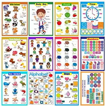 12 laminated educational preschool posters for kindergarten