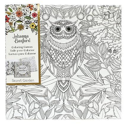 Johanna Basford - jardín secreto para colorear lienzo Set - búho y ...