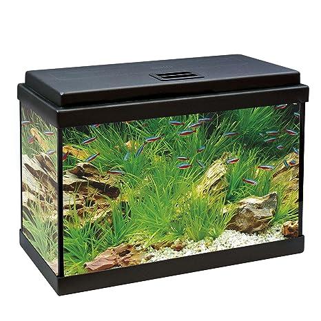 ICA KDI40 Kit Aqua-Led 40 con Filtro Interior, Negro