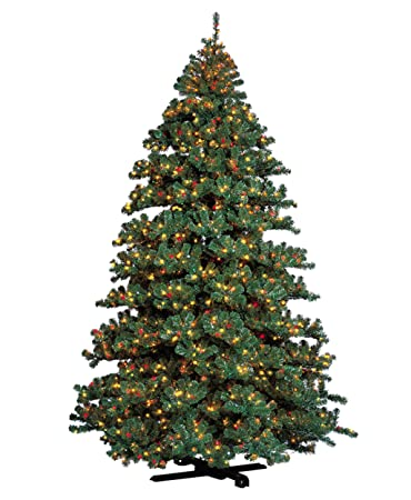 Barcana 7-Foot Remote Control Alaskan Fir Christmas Tree with 1500 Multi  and Clear Lights - Amazon.com: Barcana 7-Foot Remote Control Alaskan Fir Christmas Tree
