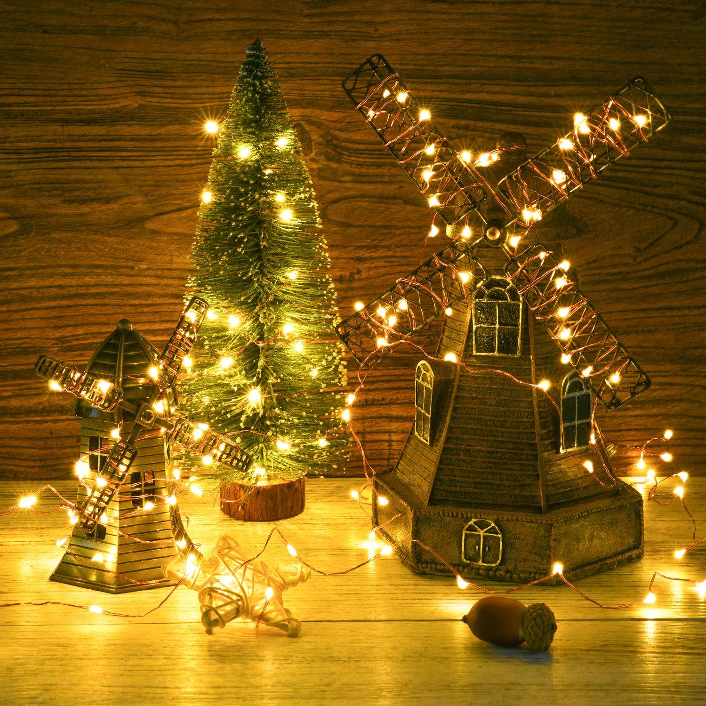 Amazon.com: DecorNova 60 LED Battery Powered Fairy String Lights ...