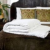 "Silk Bedding Direct SILK-FILLED DUVET. Single Size (Euro). Spring/Autumn (9 Tog). 100% Mulberry Silk. Hypoallergenic. 200cm x 150cm / 79"" x 59"". OEKO-TEX® Standard 100 Certification. SPECIAL"