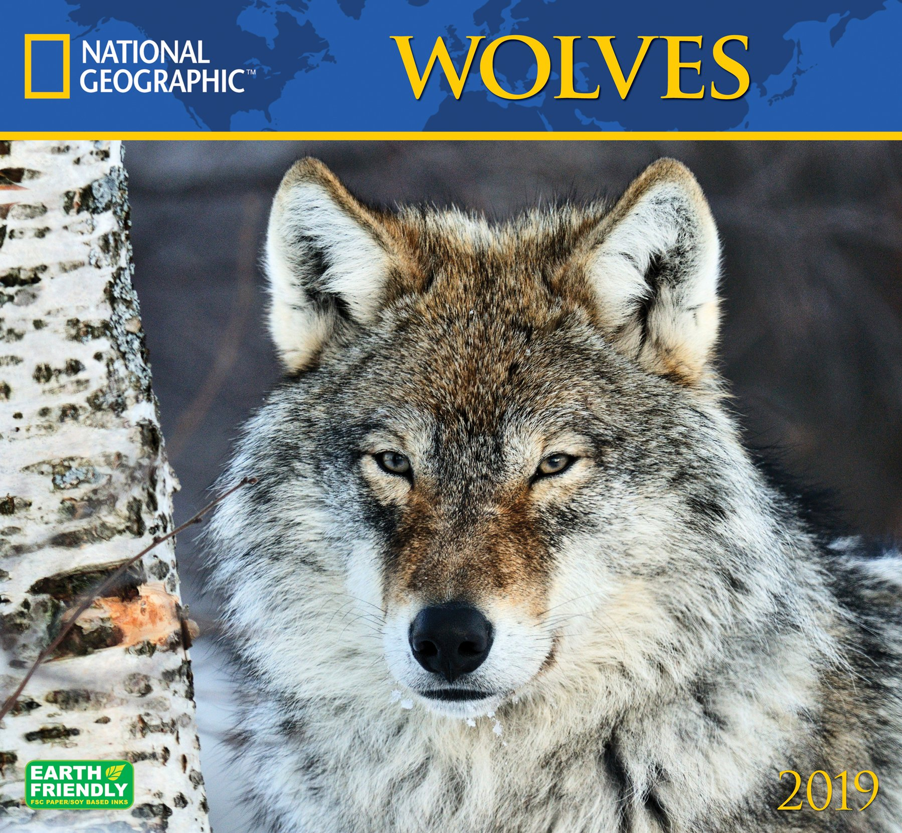 national geographic wolves 2019 wall calendar