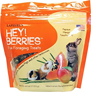 product image for LAFEBER'S Hey! Berries Fun Foraging Treats 4oz