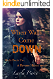 When Walls Come Down: A Reverse Harem Novella