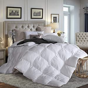 L LOVSOUL Down Comforter King All Season Duvet Insert,Hypoallergenic Goose Down Comforter,1200 Thread Count 700+ Fill Power 100% Egyptian Cotton(White,106x90inches)
