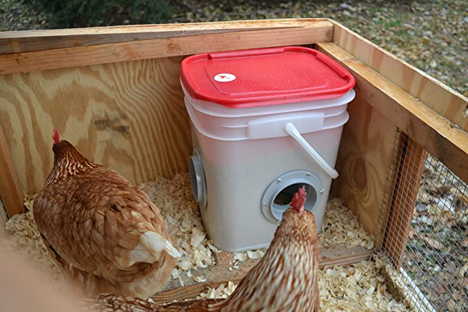 poultry chicken rodent made feeder sale dine best australian for drinkers and proof feeders chook the a products