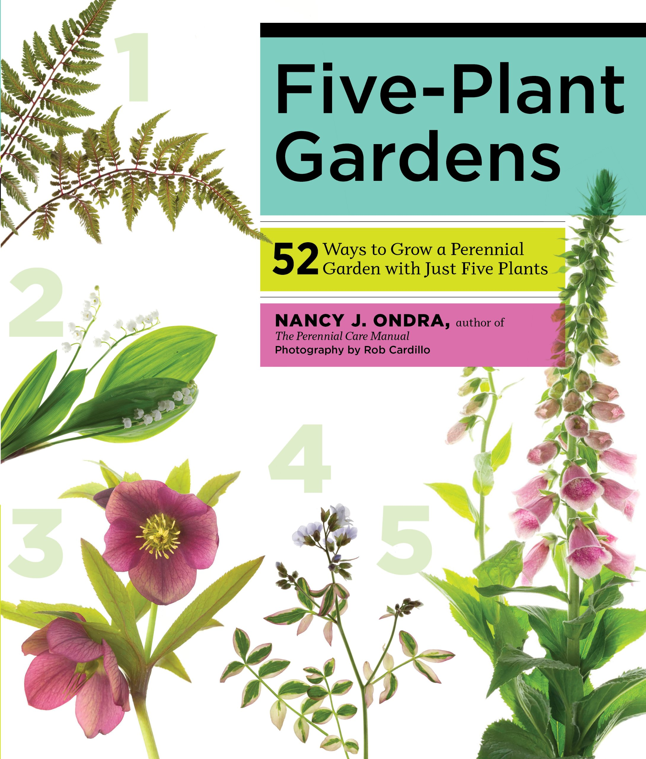 Five Plant Gardens 52 Ways To Grow A Perennial Garden With Just