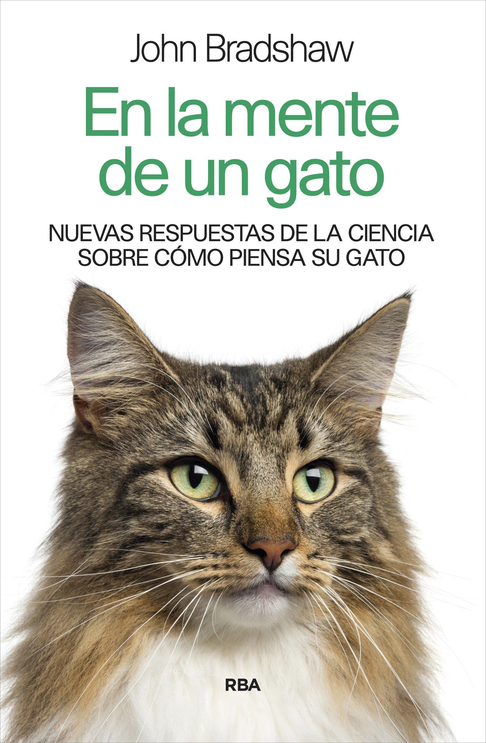 En la mente de un gato (Spanish) Paperback – 2014