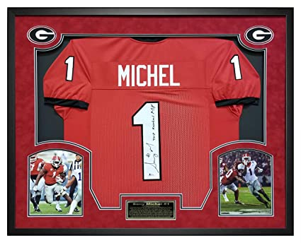 reputable site 7b610 d2ec1 Sony Michel Autographed Red Custom Jersey with 2018 Rose ...