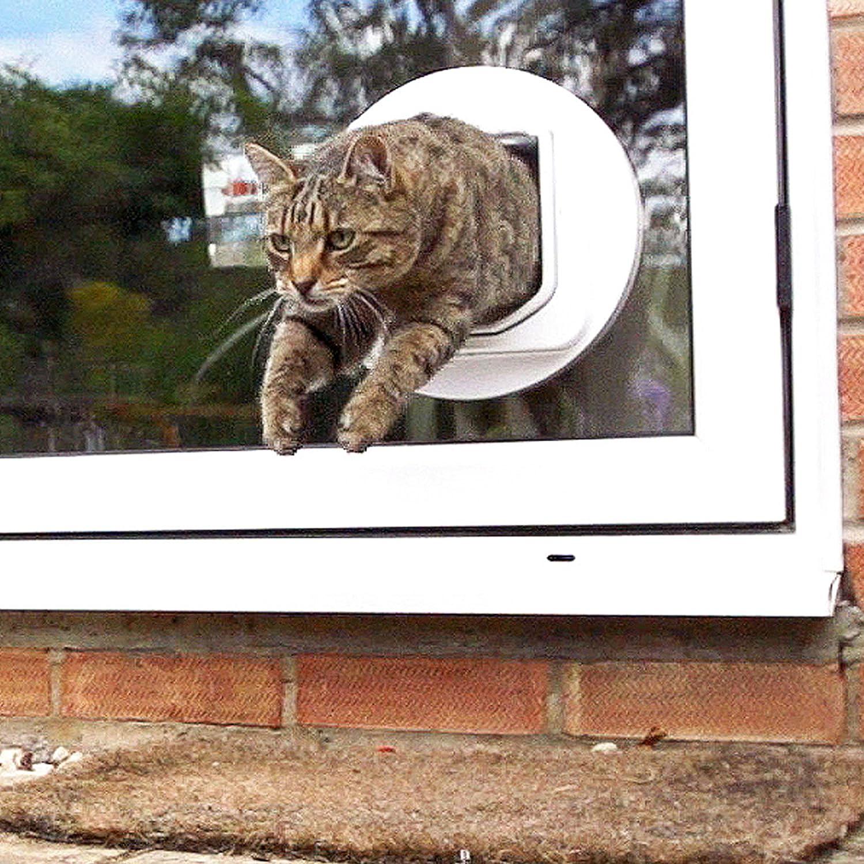 Amazon Sureflap Dualscan Microchip Cat Door Flap Pet Doors