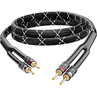 GearIT 12AWG Premium Heavy Duty Braided Speaker Wire Cable (6 Feet) Dual Gold Plated Banana Plug Tips - In-Wall CL2…