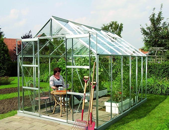 Gartenwelt Riegelsberger Invernadero Mars – Acabado: 9900 ESG 3 mm de Aluminio, Superficie: Aprox. 9, 9 m², con 2 Ventanas de Techo, Casquillo: 2, 54 X 3, 79 M: Amazon.es: Jardín