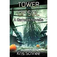 Tower Of Sol: A GameLit Novella (English Edition)