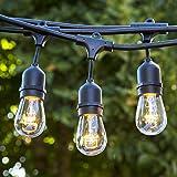 Amazon Com String Light Company Vintage 48 Ft Outdoor