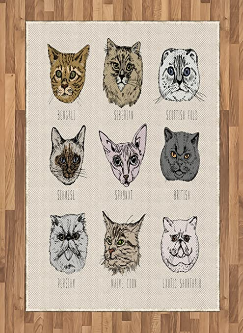 Ambesonne Indie Area Rug Different Breeds Cat Portraits In Doodle Style And Funny Animals Kittens Flat Woven Accent Rug For Living Room Bedroom Dining Room 4 X 5 7 Tan Beige Taupe