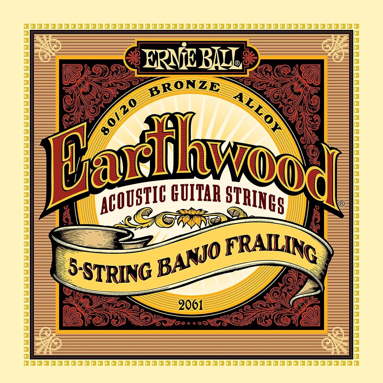 Ernie Ball Earthwood 5-string Banjo 80/20 Bronze Loop End Bluegrass Set, .009 - .020 P02063