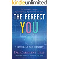 The Perfect You: A Blueprint for Identity (English Edition)