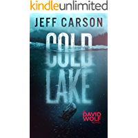Cold Lake (David Wolf Mystery Thriller Series Book 5) book cover