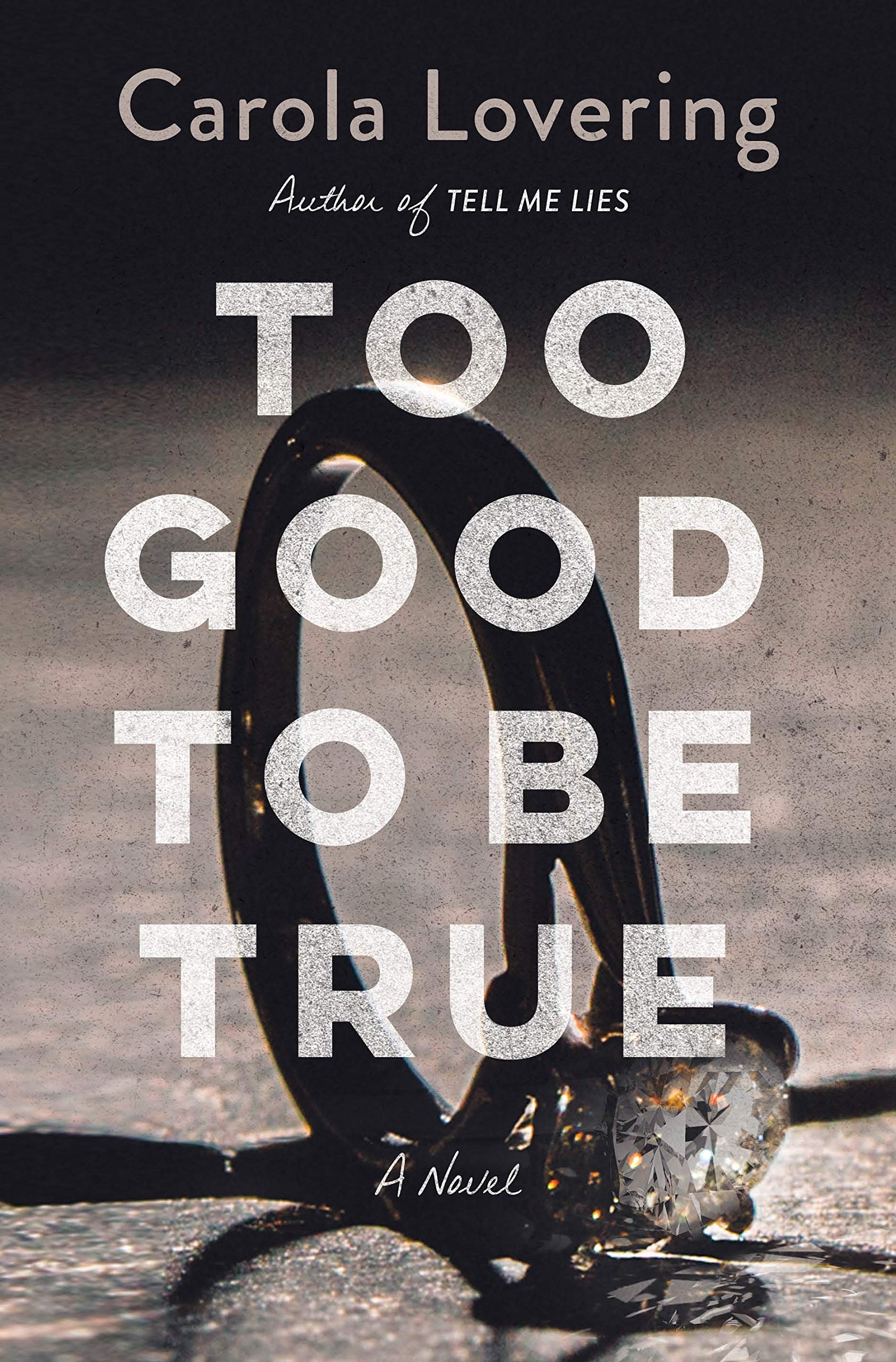 Too Good to Be True: A Novel: Lovering, Carola: 9781250271372: Amazon.com:  Books