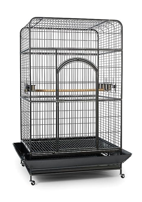 Prevue Mascota Productos Empire Jaula de pájaros, X-Large ...