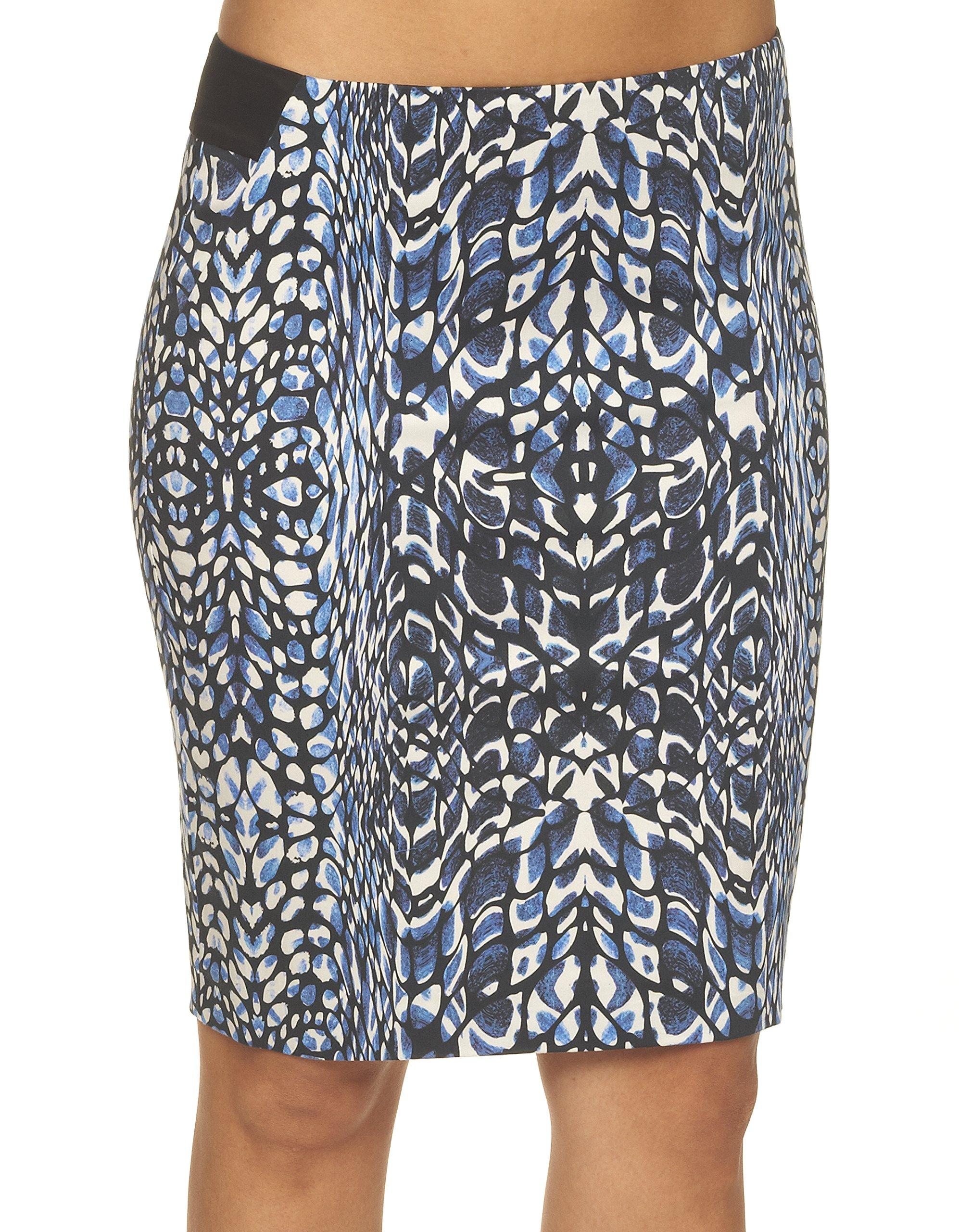 Robert Graham Women's Sydney Top Skirt, Blue, 12