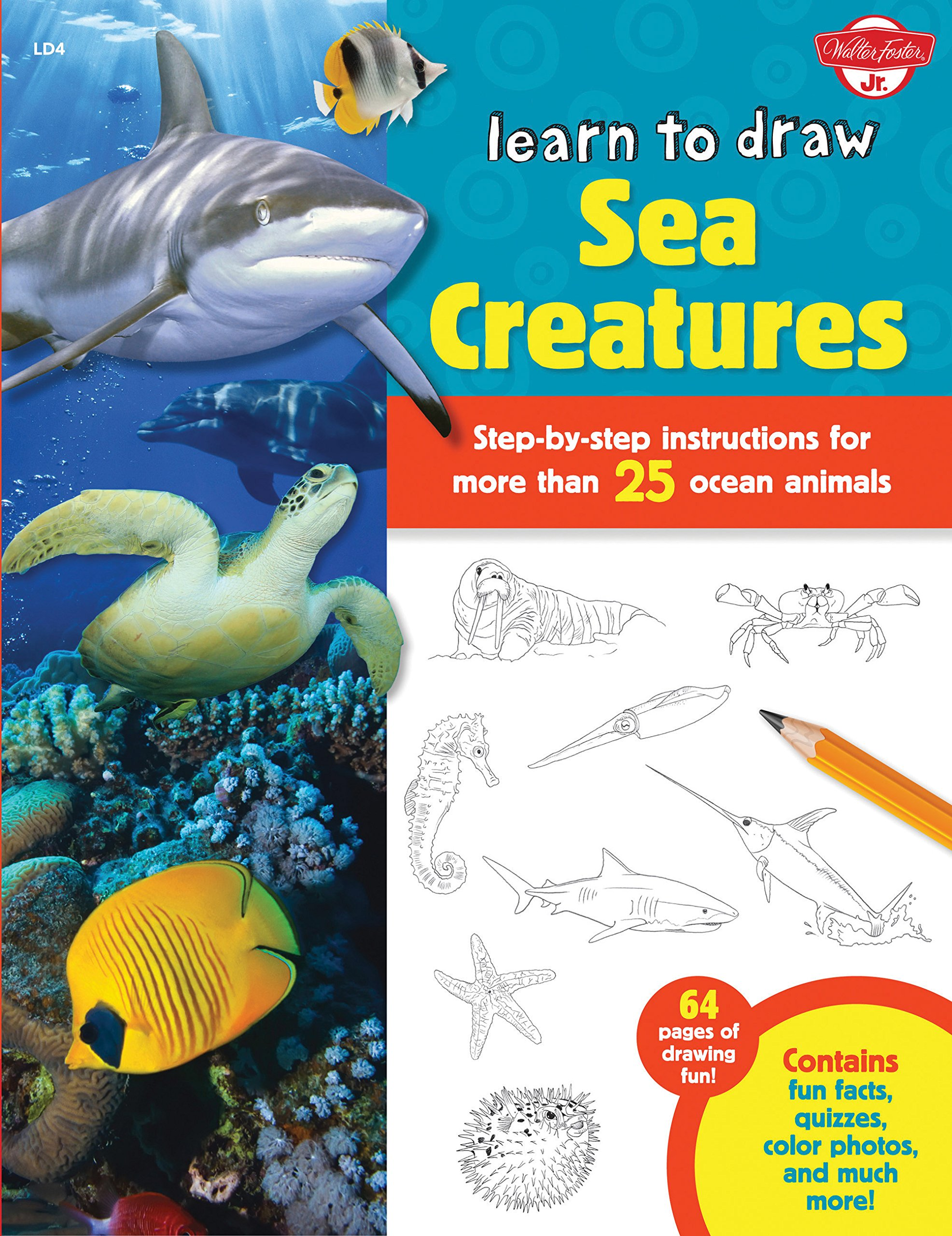 learn to draw sea creatures step by step instructions for more