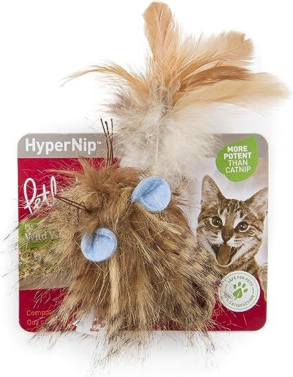 Amazon Com Petlinks 49717 Wild Wooly Long Tailed Mouse Hyper Nip