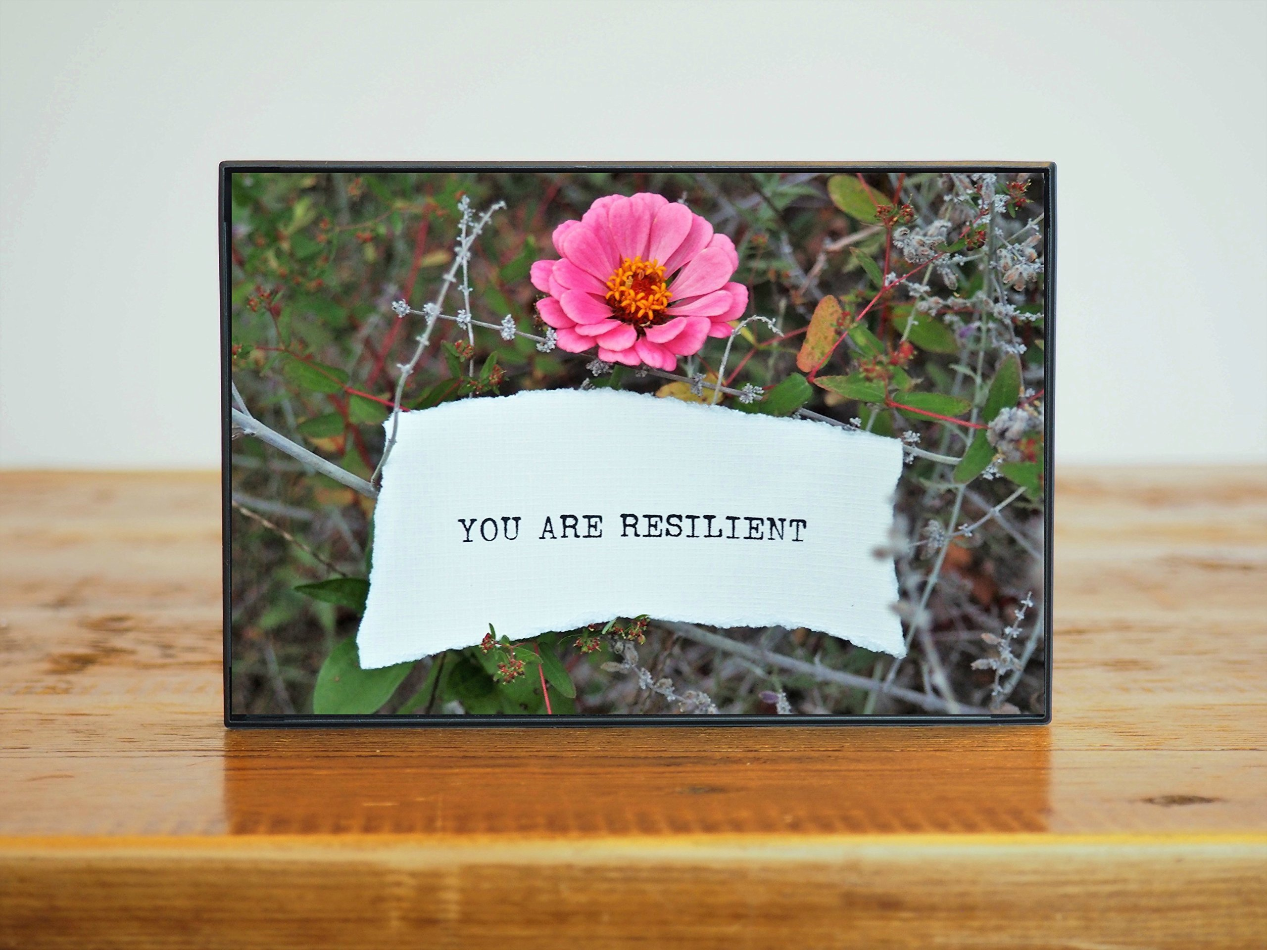 You Are Resilient Inspirational Small Framed 4x6 Photo Artwork Bright Pink Flower in Nature Gift