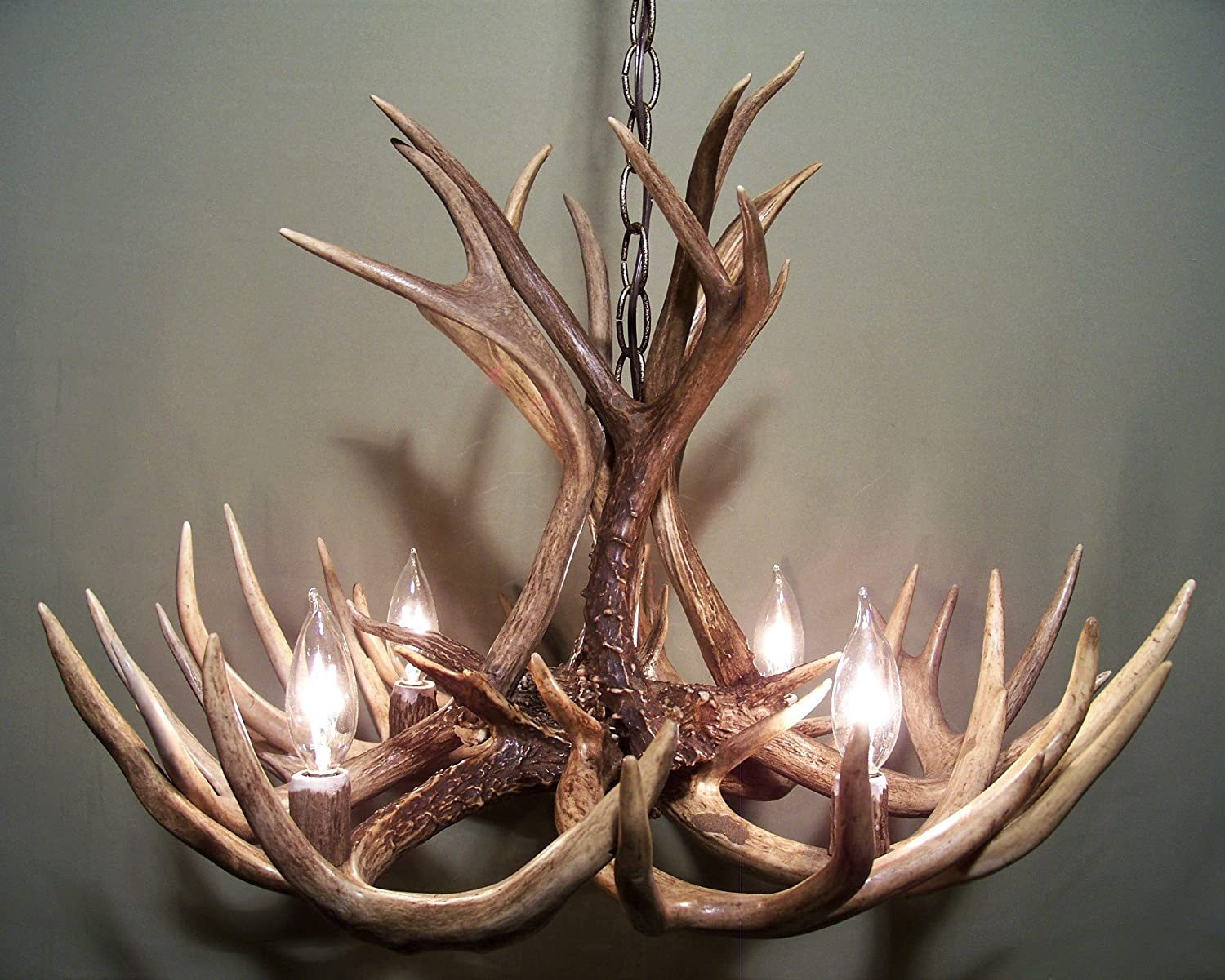 Amazon real antler chandelier whitetail mule deer combo 12 amazon real antler chandelier whitetail mule deer combo 12 antlers 4 lights shed antler art elk covered sockets handmade 23wide x 16 tall arubaitofo Images