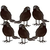 Halloween Black Feathered Small Crows – 6 Pc Black Birds Ravens Props Décor Halloween Decorations Birds